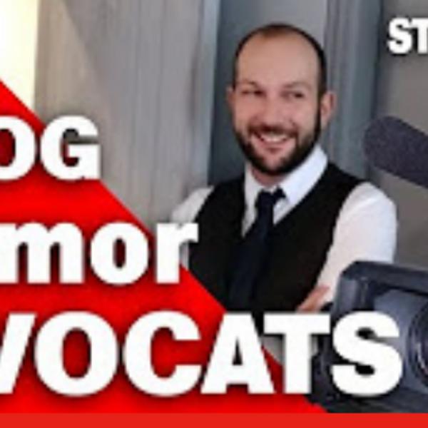 Reportage vidéo chez Armor Avocats