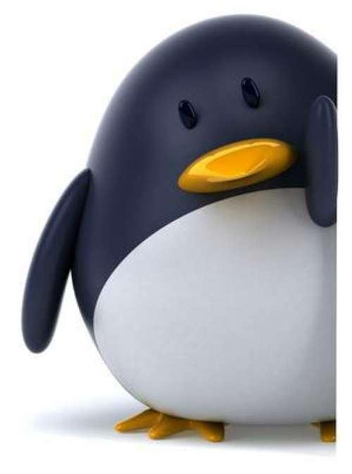 Google Penguin : nouvel algorithme pour référencement naturel de Google 0