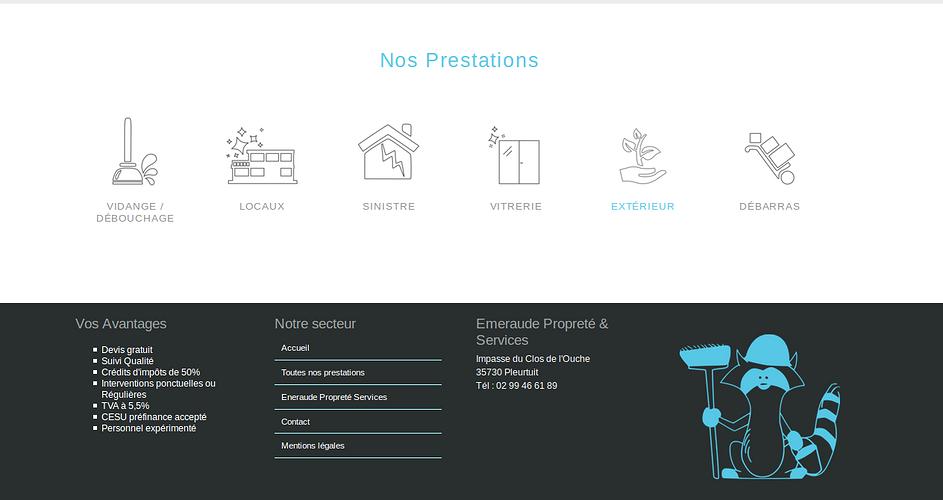 Emeraude Propreté & Services - Entretien, nettoyage pour pros et particuliers eps3