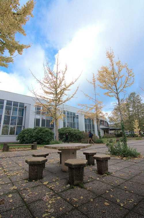 Site internet du Lycée Jacques Cartier à Saint Malo dsc0124